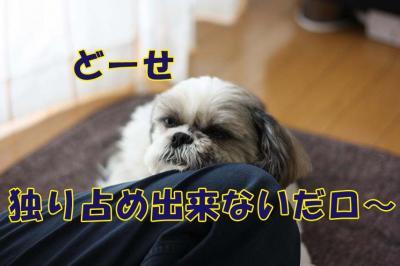 014_20090506141948.jpg