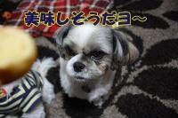 022_20081127153014.jpg