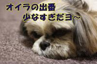 030_20090117191840.jpg