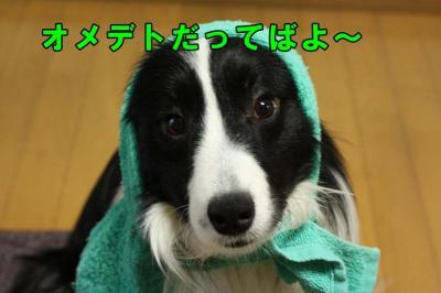 037_20090430193829.jpg