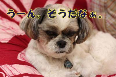 047_20090612140852.jpg