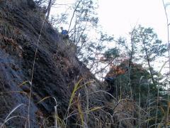 藪の中の懸垂下降