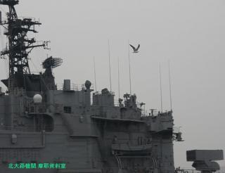 舞鶴基地の元護衛艦はるな 前島埠頭から 2