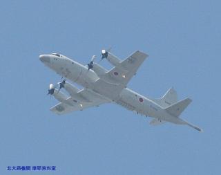 岐阜基地 見上げればP-3CとC-130H 2