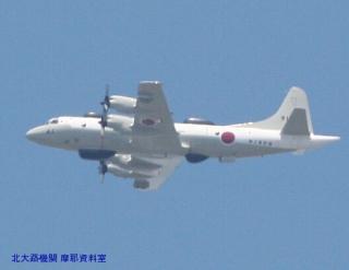 岐阜基地 見上げればP-3CとC-130H 3