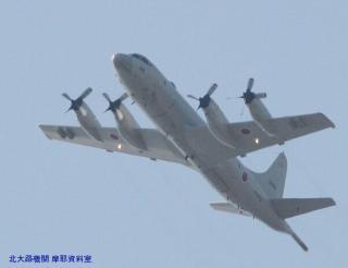 岐阜基地 見上げればP-3CとC-130H 5