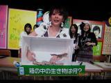 NTV2008年11月16日1
