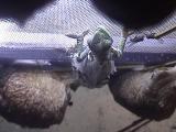 ルディス・ベビーさん2008年12月9日1