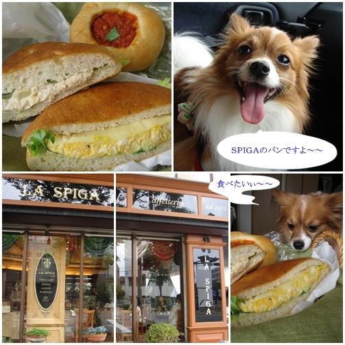 SPIGAのパン