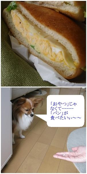 パンが食べたい