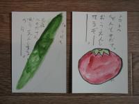 お絵かき 絵手紙