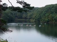 009_宮沢湖