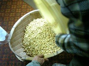 大豆水を切る