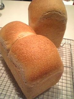 食パン08.11.2