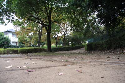 IMG_0229.JPG2008.11.15