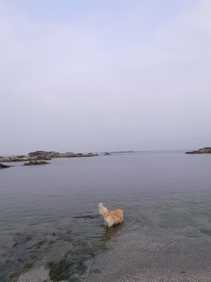 さっそく海へ