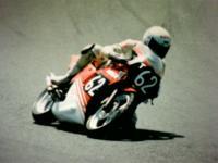 19875.jpg