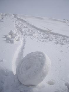 雪アンモナイト02