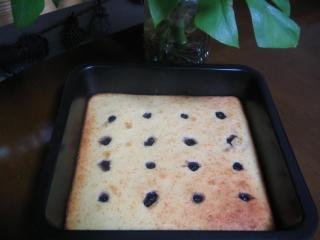 スクエア ヨーグルトケーキ