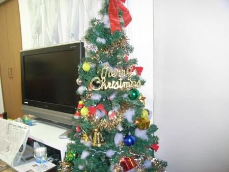 クリスマスツリー買いました
