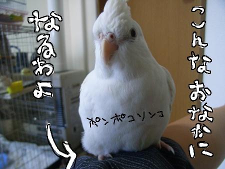 悪夢っ!!