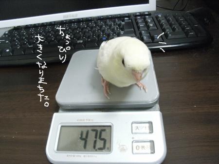 体重も少し増えて健康でス