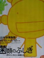 菌類のふしぎポスター