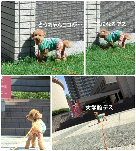 pageなかじま3-1