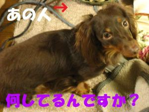 IMG_5873.jpg