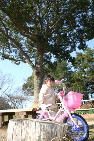 公渕公園(08.03.15)1