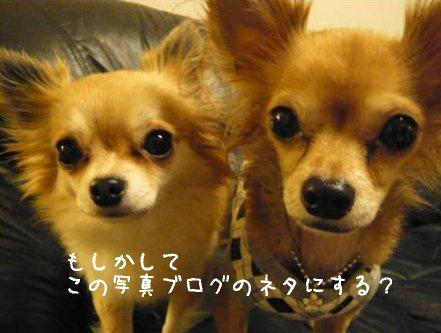 2008-01-13-03.jpg