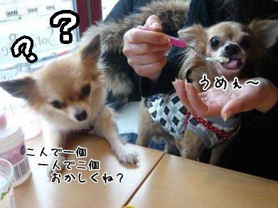 2008-01-19-14.jpg