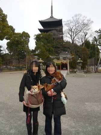 2008-01-19-20.jpg