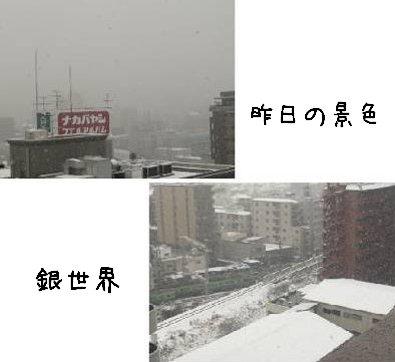 2008-02-10-01.jpg