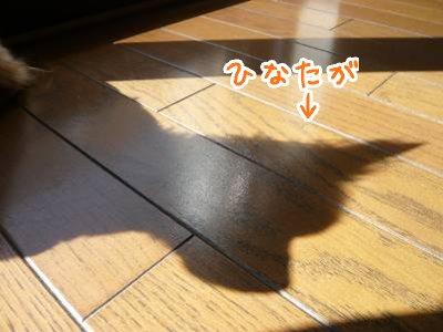 2008-03-16-01.jpg