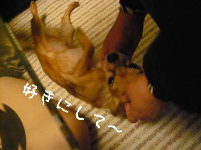 2008-03-21-08.jpg
