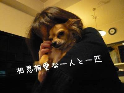 2008-03-21-11.jpg
