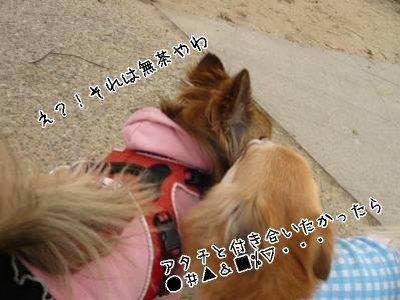 2008-03-22-04.jpg