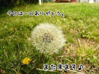 2008-04-09-34.jpg