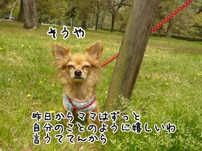 2008-04-16-15.jpg