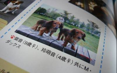 2008-04-25-06.jpg