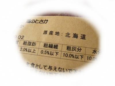 2008-06-09-10.jpg