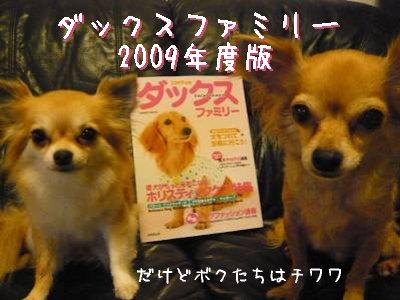 2008-06-10-01.jpg
