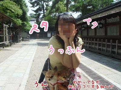 2008-06-25-09.jpg