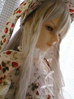 blog-05111102.jpg