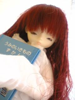 blog-06022402.jpg