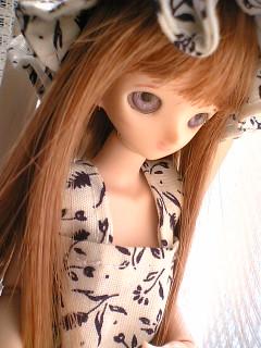blog-06040102.jpg