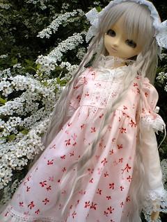 blog-06040203.jpg