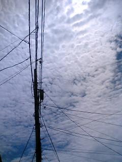 blog-06071401.jpg