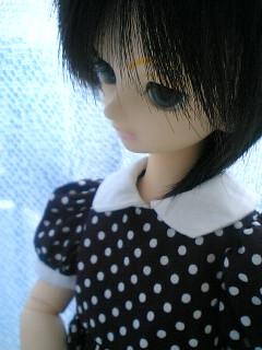 blog-06092501.jpg
